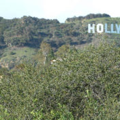 This is now the third lawsuit that has been filed against the city regarding the issue of the Beachwood gate, which leads to a view of the Hollywood Sign.