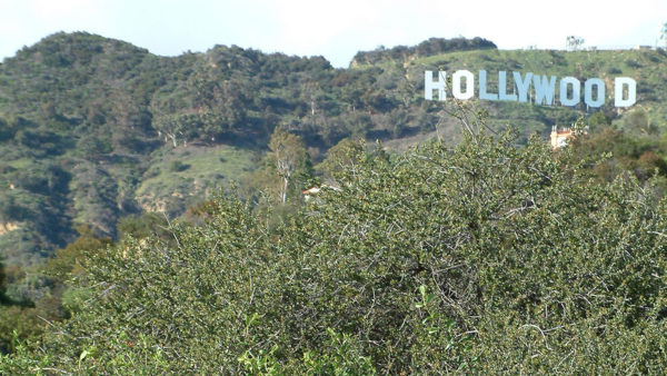 Lawsuit Filed to Open Gate to Hollywood Sign